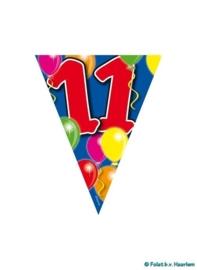 Vlaggenlijn 11 jaar