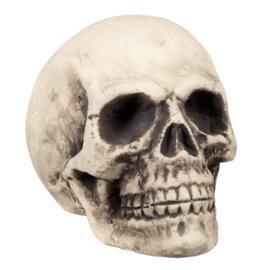 Skelet hoofd Supermind