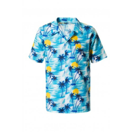 Hawaii shirt tropisch blauw