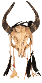 Masker indian skelet met hoorns