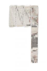 Paillettenband recht zilver 3m