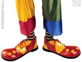 Jumbo clownsschoenen luxe