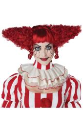 Creepy clown dark pruik