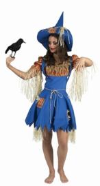 Vogelverschriksters kostuum