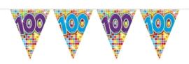Vlaggenlijn 100 jaar