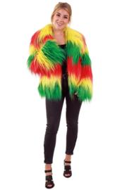 Bontjas lang haar rood, geel, groen