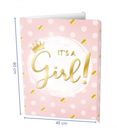 Window signs - It's a Girl! | Raambord