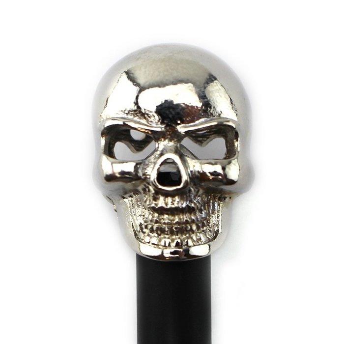 Zwart potlood, zilverkleurige schedel
