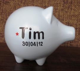 Spaarvarken Tim