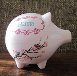 Spaarvarken Hanna