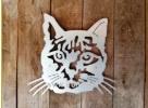 Silhouette kat gecoat