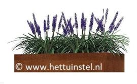 Cortenstaal plantenbak 110x40x40cm