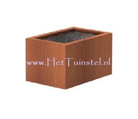 Cortenstaal vijver 120x80x60cm
