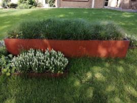 Cortenstaal plantenbak 400x100x40cm 3mm dik