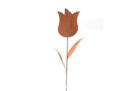 Tulp op steel Iron ecoroest  groot  H 160cm