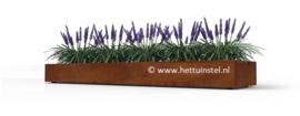 Cortenstaal plantenbak zonder bodem 190x129X40cm