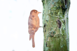 Schroefvogel Iron ecoroest  31x11 cm