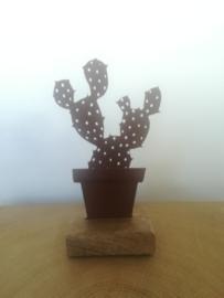 Schijfcactus van metaal op houten voetje