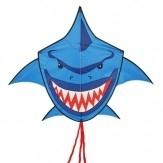 Buddy Shark blue