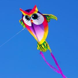 X-Kites Mini Nylon Kites