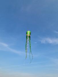 groene bonte 15 meter inktvis