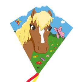 paard eddy