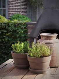 Terracotta potten - Annie Sloan krijtverf en lacquer