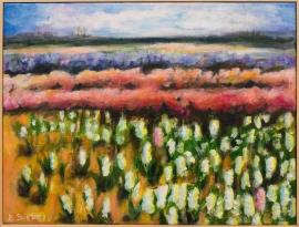 Bollenvelden met hyacinten (BS-020)