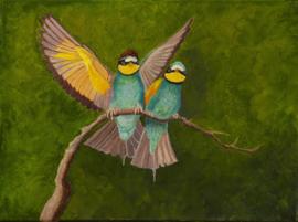 Love birds (AS-010)