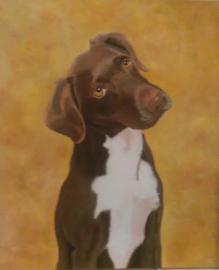 Hond (AS-009)