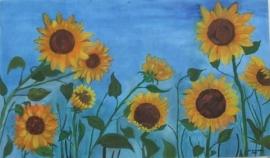 zonnebloemen  [EZ-040]