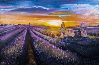 Lavendelvelden (hem-014)