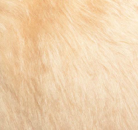 "Mohair Fur Steiff Schulte nr. 4100 ""Honing Blond"""