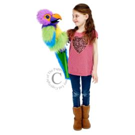 Amazon Macaw Handpop