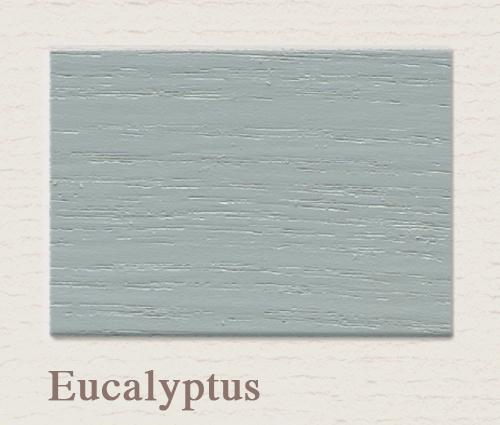 Eucalyptus Outdoor