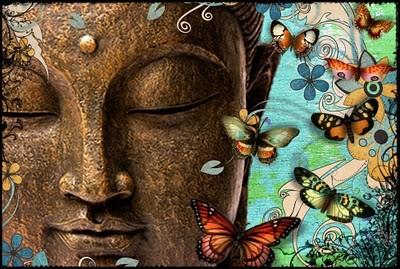 butterflybuddhacollagecopy.jpg