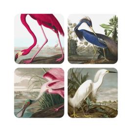 Birds Coaster set
