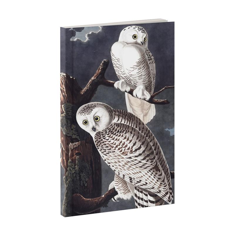 Notitieboek uilen