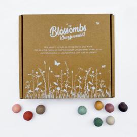 Blossombs | geschenkdoos (9 zaadbommetjes)