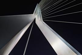 Rotterdam (50x70cm)
