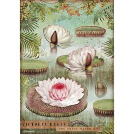 Rice paper 'Amazonia Water Lily'