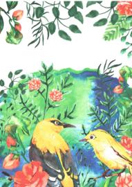 Vogelkaart A5