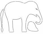 Edyta Sitar, Elephant sjabloon