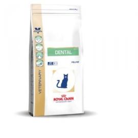 R.C.  kat  Dental