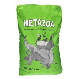 Metazoa Timotexxx       Alleen af te halen