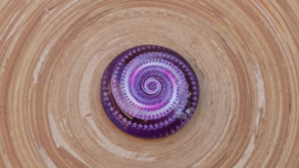 Paarse cabochon 25 mm