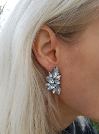 "Statement Oorbellen ""Crystal Wings"""