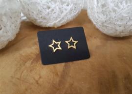 """Stud Oorbellen """"The Brightest Star"""" Stainless Steel"""
