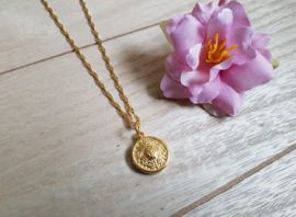"Leeuw Ketting ""Lion Coin On Rope Chain"" Goud"