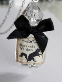 "Magic Bottle Ketting ""Black Cat`s  Whiskers"""